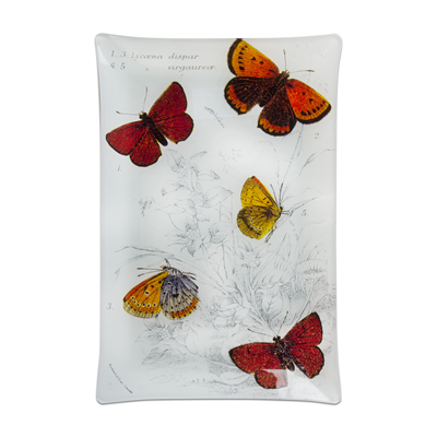 TAG Butterfly Glass Plate